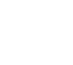Video Advertising Company